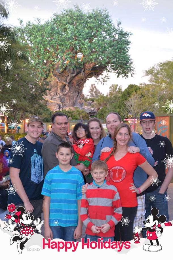 animal kingdom park on Christmas Day