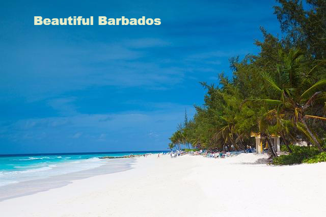 learn about barbados